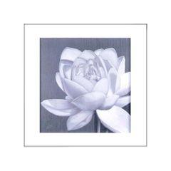 quadro-decorativo-flor-de-lotus-branco